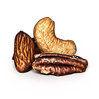 Planters select nuts